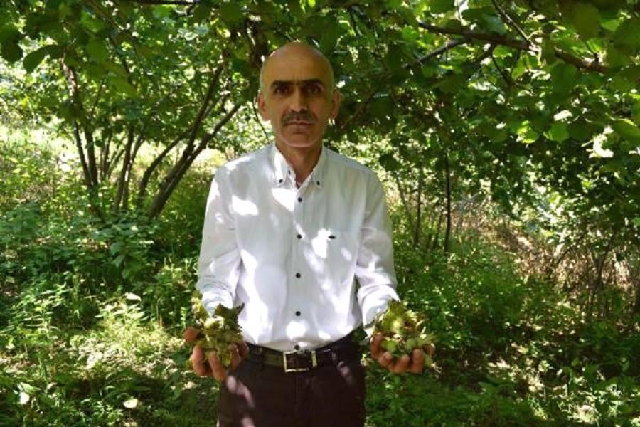 Karan'dan TMO ve Fındık Eleştirisi