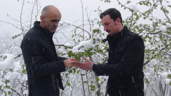 Fındık üreticisinde kar ve don tedirginliği